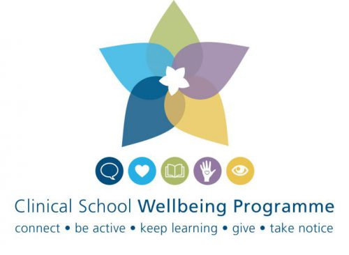 Wellbeing Programme logo